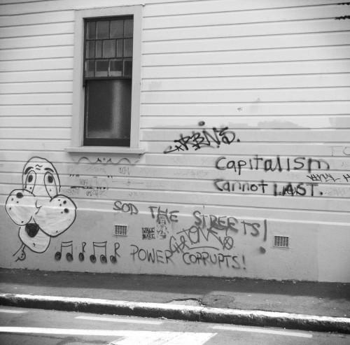 Capitalism cannot last — Basin Reserve graffiti, 2011.