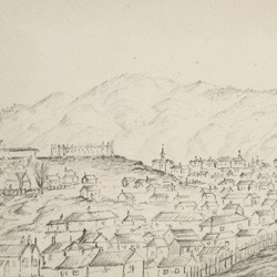 A view from the lower slopes of Brooklyn, of the Mount Cook/Te Aro area, 1888