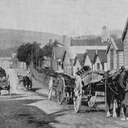 Haining Street, Wellington reproduced from the New Zealand Mail, 1904.