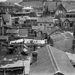 Te Aro, Wellington, looking towards Mount Cook, 1924.